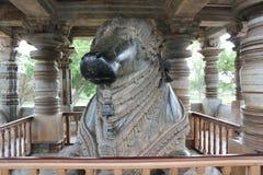 在Hoysaleswara寺庙的第7个最大的整体楠迪雕象 库存图片