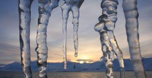 与鸟和山日落的冰柱 库存照片