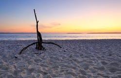 在Hyams海滩Jervis海湾的黎明 库存照片