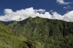 在Iao谷,毛伊,夏威夷,美国的山腰 图库摄影