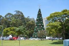 在Ibirapuera的圣诞树在圣保罗市 免版税库存照片
