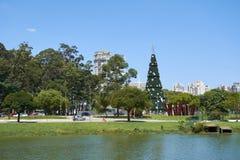 在Ibirapuera的圣诞树在圣保罗市 免版税图库摄影