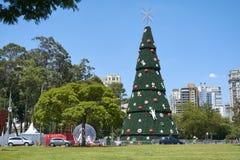 在Ibirapuera的圣诞树在圣保罗市 库存图片