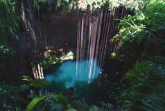 在Ik Kil考古学公园的cenote在奇琴伊察,墨西哥附近 库存图片
