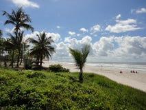 在ilheus的海滩 库存照片