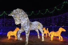 在illumia节日的马装饰在釜山,韩国 库存图片