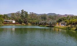 在Inhotim公开当代艺术博物馆- Brumadinho,米纳斯吉拉斯州,巴西的湖视图 图库摄影