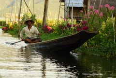 在Inle湖的日常生活在缅甸,亚洲 库存图片