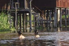 在Inle湖的生活 免版税库存照片