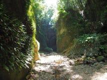 在Iokido洞附近的峡谷 库存图片