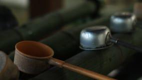 在Iruki寺庙的洗净低谷在东京 股票视频