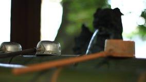 在Iruki寺庙的洗净低谷在东京 影视素材