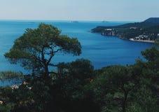 在Islands王子的激动人心的景色 库存图片