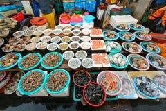 贝类在Jagalchi鱼市,釜山,韩国上 免版税图库摄影