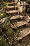 在japaneese庭院产经en的台阶 免版税图库摄影