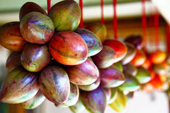 在Java,印度尼西亚的Terong Belanda果子 图库摄影