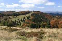 在Javorniky山的秋天 免版税图库摄影