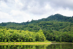 在Jedkod Pongkonsao自然研究和生态旅游分的水库 免版税库存照片