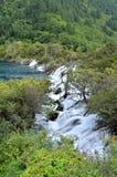 在jiuzhai谷,瓷的瀑布 图库摄影