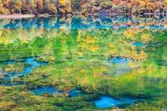 在jiuzhaigou的五颜六色的秋天 库存照片