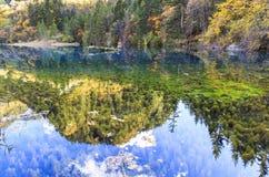 在jiuzhaigou,中国的秋天 库存照片