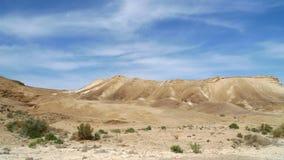 春天在Judea沙漠。 免版税图库摄影