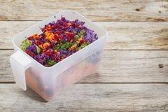 榨汁器菜黏浆状物质 库存照片