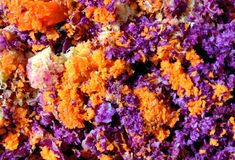 在Juicing红叶卷心菜和红萝卜以后的黏浆状物质纹理 免版税图库摄影