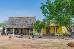在Kadiapatti附近的农场 免版税图库摄影