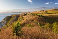 在Kaikoura半岛走道,新西兰的金黄日落 免版税库存照片