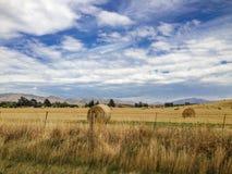 在Kaikoura附近的风景风景在新西兰的南岛 免版税图库摄影
