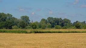 在Kalkense Meersen自然保护,富兰德,比利时的晴朗的farmscape 库存图片