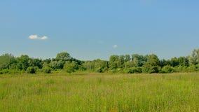 在Kalkense Meersen自然reerve,富兰德,比利时的开拓地风景 图库摄影