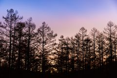 在Kamikochi的日落前 免版税图库摄影