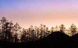 在Kamikochi的日落前 库存照片