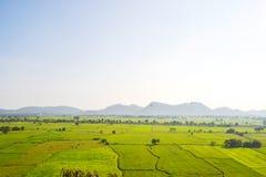 在Kanchanaburi的绿色米领域,泰国 免版税库存图片