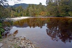 在Karamea,新西兰附近的Oparara河 库存图片