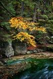 在Karkonosze山的小河 库存图片