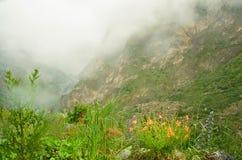在karmadon峡谷的雾 库存照片