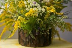在kashpo的花komozitsiya作为一个木制框架 免版税库存图片