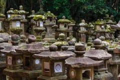 在Kasuga-taisha寺庙,奈良的石灯笼在日本 库存照片