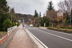 在kawagichiko湖,山梨,日本附近的街道 免版税库存照片