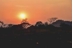 在Khao亚伊国家公园的日落 免版税库存图片