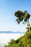 在Khao在Kaeng Krachan国家公园的Panoen Thung的早晨薄雾 免版税库存图片