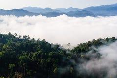 在Khao在Kaeng Krachan国家公园的Panoen Thung的早晨薄雾 免版税图库摄影
