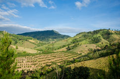 在Khao Kho的泰国山。 库存图片