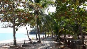 在Khao Plai水坝海滩的美好的自然在泰国 免版税库存照片