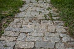 在Khortytsya海岛上的老石道路  图库摄影