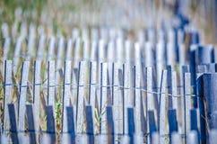 在Kiawah岛南卡罗来纳的沿海海滩场面, 免版税库存图片