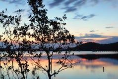 在Kincumber中央海岸NSW澳大利亚的黄昏 库存照片